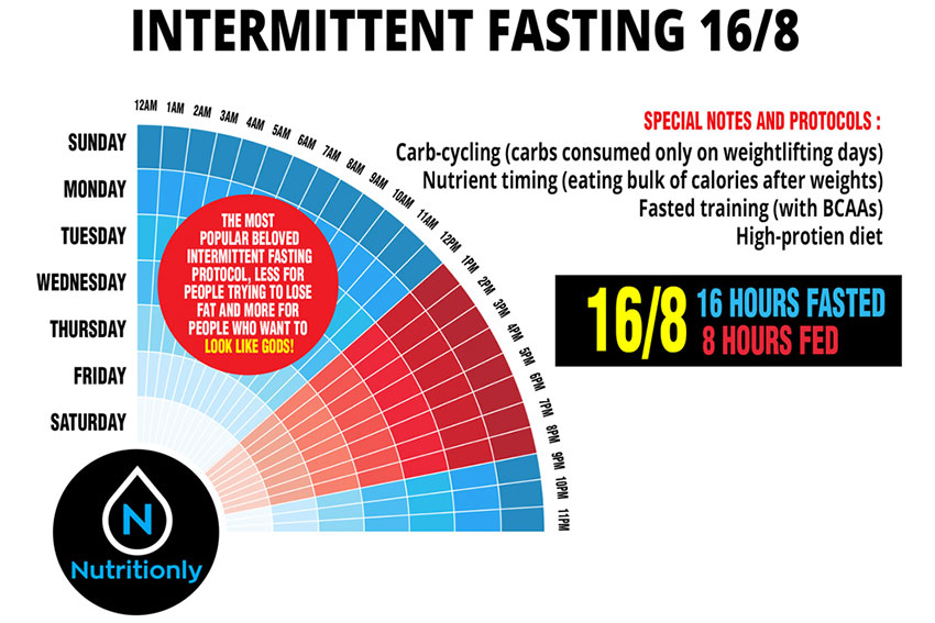 My first month into the realm of 16:8 Intermittent fasting ...